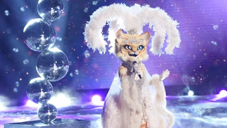 Kitty The Masked Singer