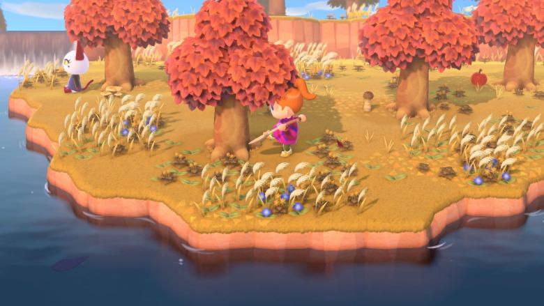 Animal Crossing New Horizons Make Paths