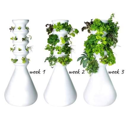 raised planter pots