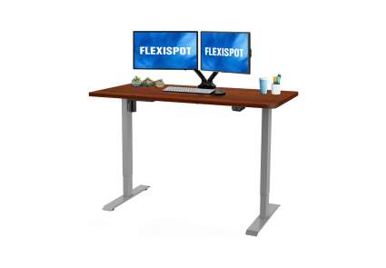 Flexispot Electric Stand Up Desk Workstation