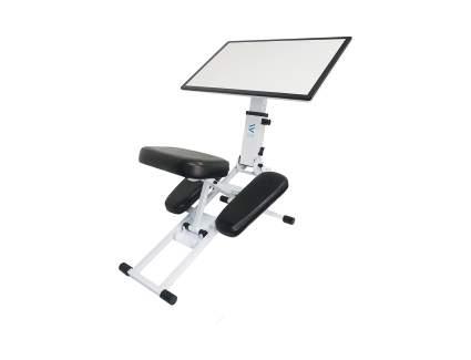 The Edge Desk Ergonomic Kneeling Chair and Desk