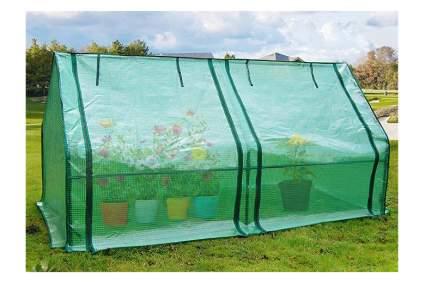 cloche mini greenhouse