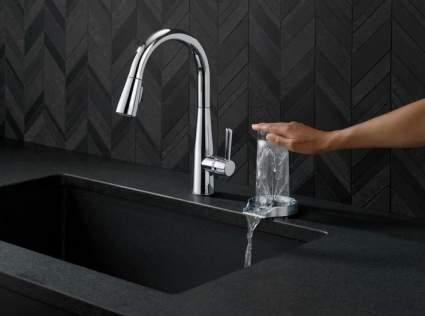 Delta Faucet Glass Rinser