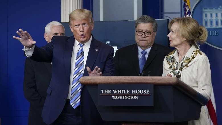 Donald Trump and Deborah Birx