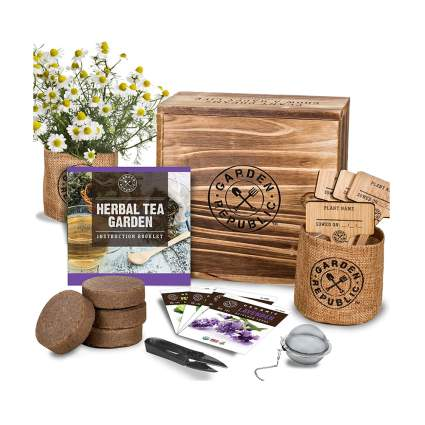 herbal tea gardening kit