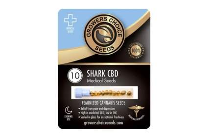 high CBD feminized seeds
