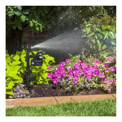 motion activated animal deterrent sprinkler