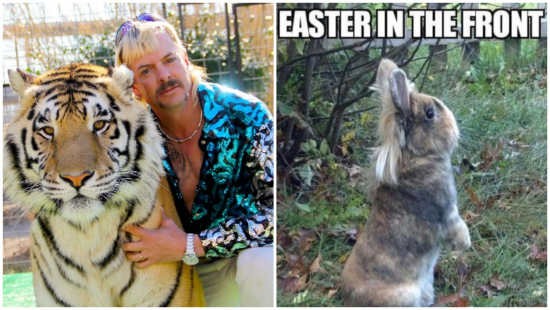 Tiger King Easter Memes Best Jokes To Share Heavy Com
