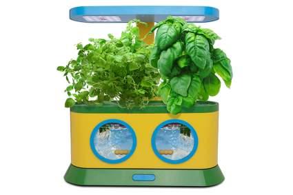 kids hydroponic garden