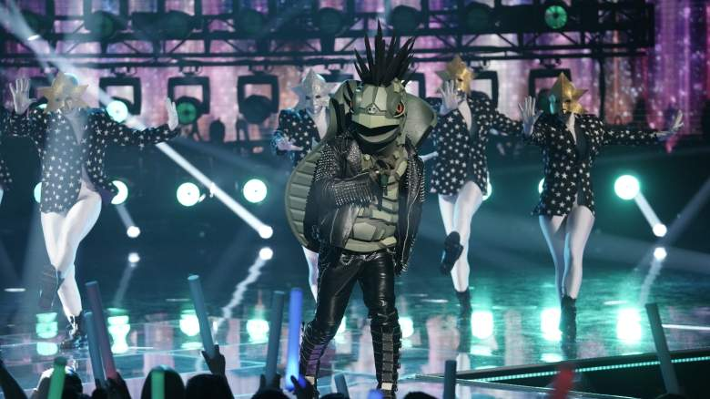 The Masked Singer Turtle