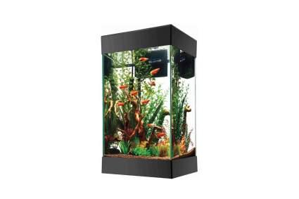 Aqueon 15 Gallon Square Aquarium Starter Kit