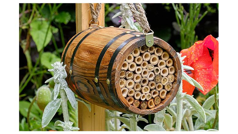 bee house jpg?quality=65&strip=all&w=780.'