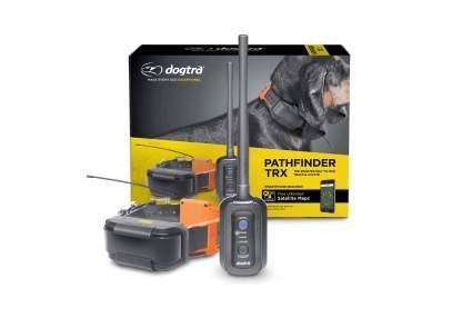 Dogtra Pathfinder TRX