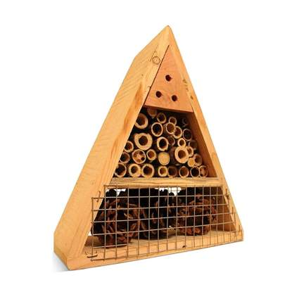 elderberry twig mason bee house
