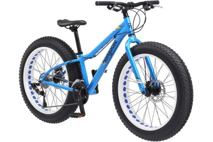 fat tire bike