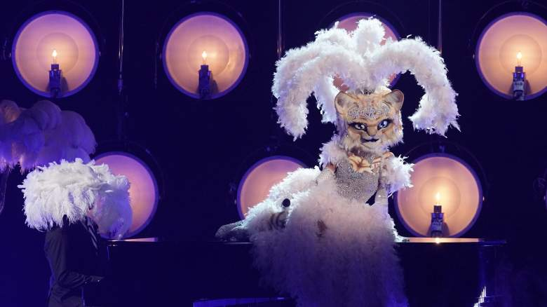 The Masked Singer Reveals