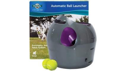 petsafe automatic dog ball launcher