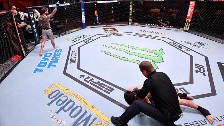 UFC knockout