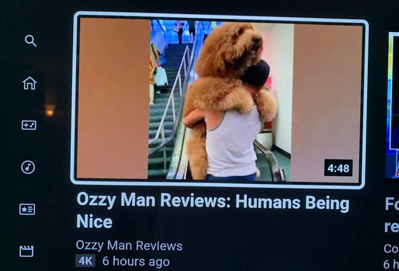 Youtube Takes Down Ozzy Man S Humans Being Nice Video For Tos Violations News Of The Day