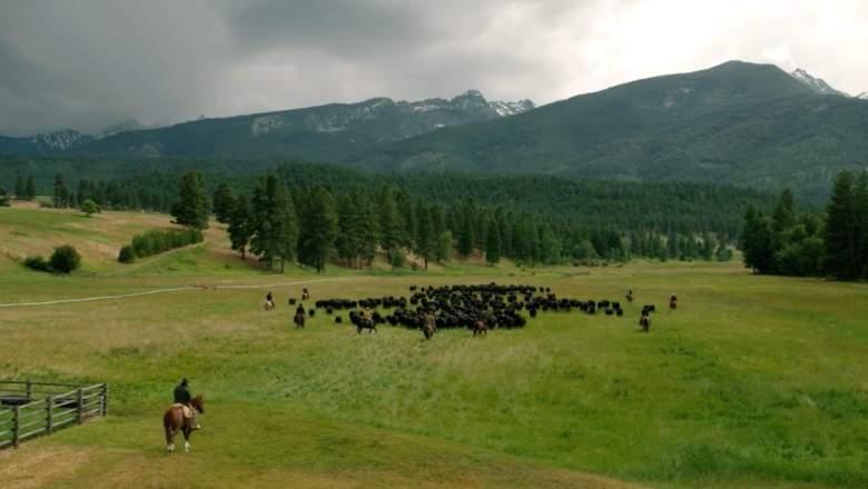 Yellowstone Season 3 Episode 1 Review