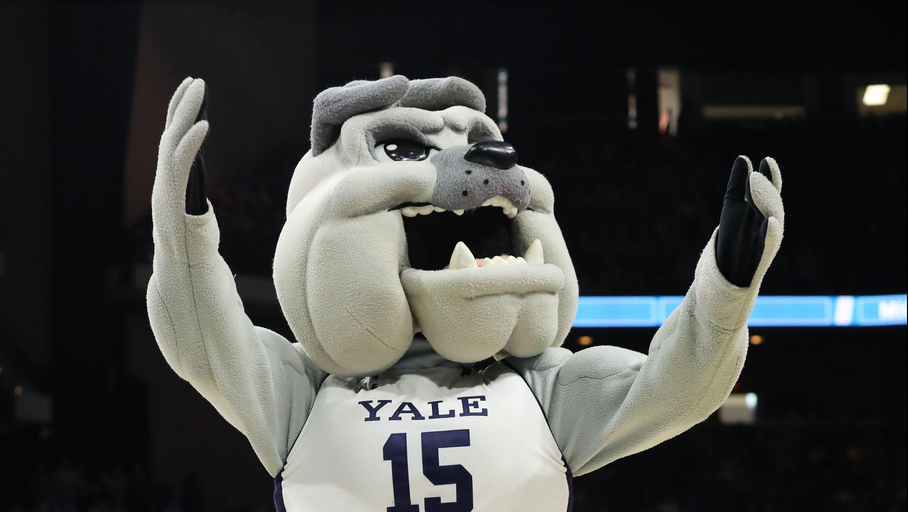 Ivy League Fall Sport Canceled due to Coronavirus