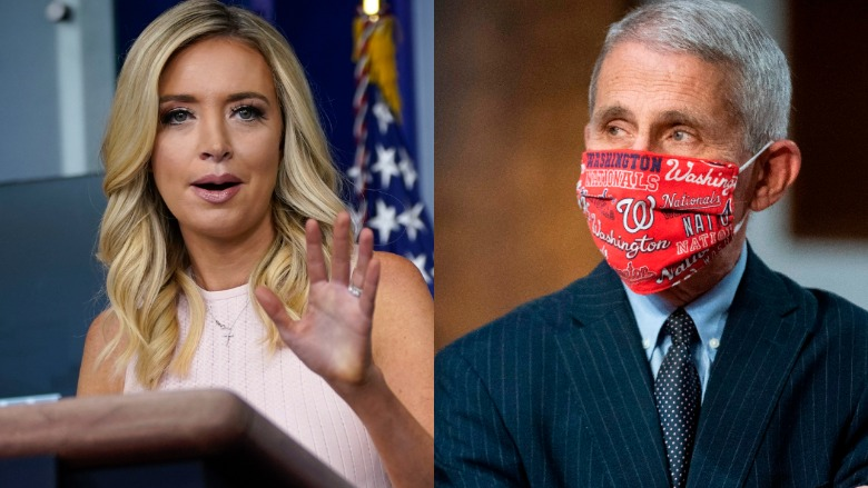 Kayleigh McEnany and Dr. Fauci