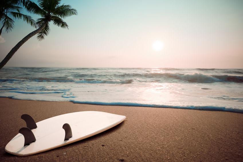 The 15 Best Surfboard Fins