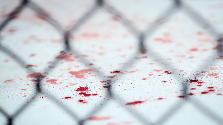UFC Octagon with Blood on Canvas