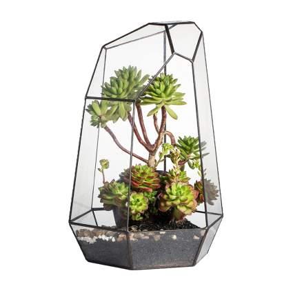 handmade glass terrarium