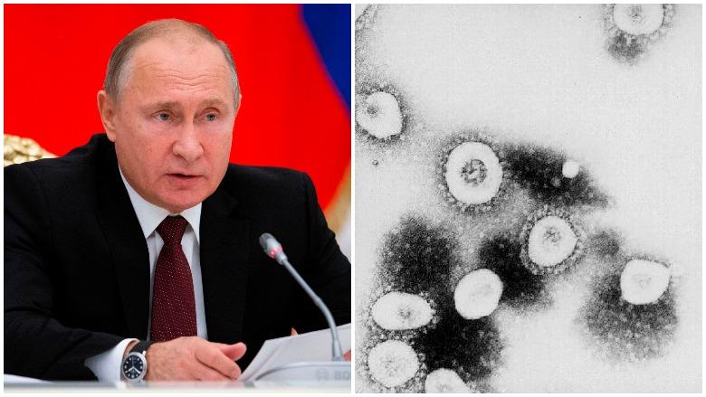 russia vaccine, russia coronavirus vaccine