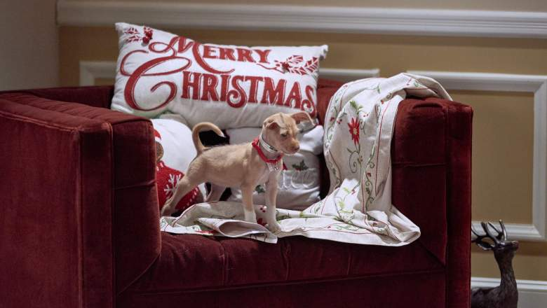 Hallmark 2020 Christmas Schedule