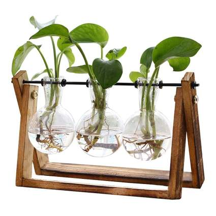 Wooden plant stand with three glass suspended vases