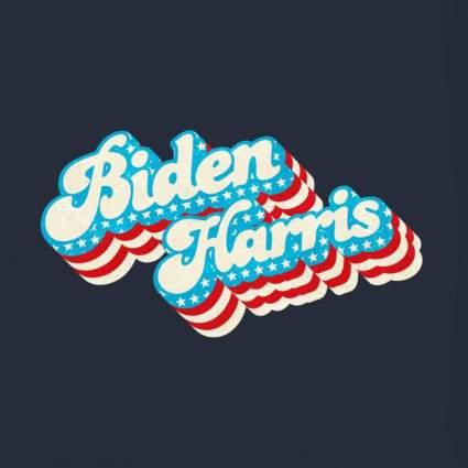 Biden Harris 2020 US Flag Lightweight Zip Hoodie
