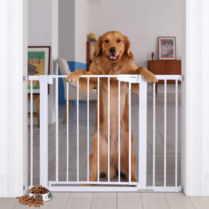 Portable dog gate for list