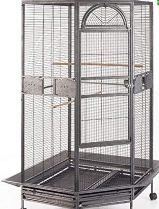 Large corner birdcage for list