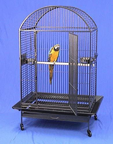 Bird cage for list