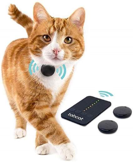 cat GPS tracker for list