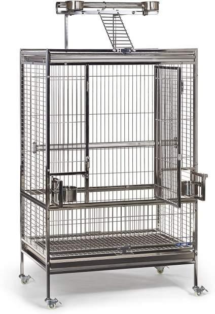 Betting birdcage sc win32 status 1326 betting
