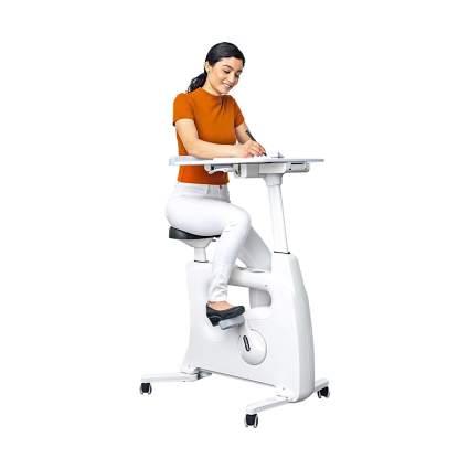 FLEXISPOT Adjustable Exercise Bike Desk and Standing Desk