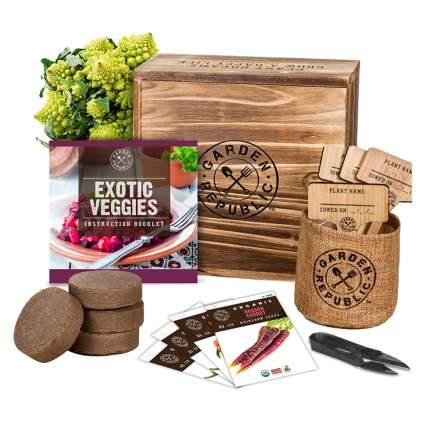 veggie planting kit