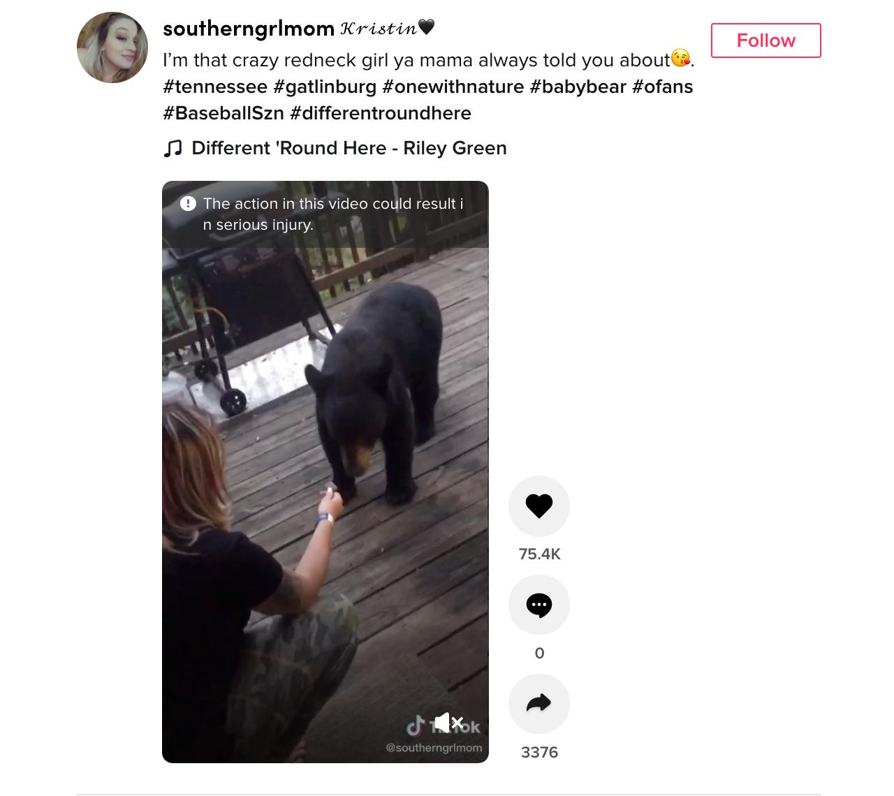 kristin farris black bear