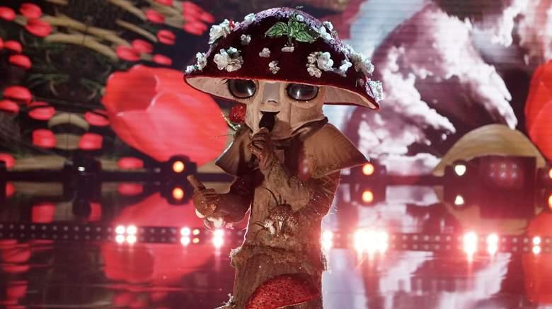 The Masked Singer Mushroom