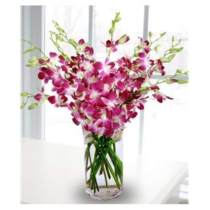 purple orchid bouquet