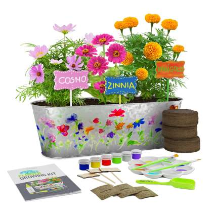 flower growing kit for kids