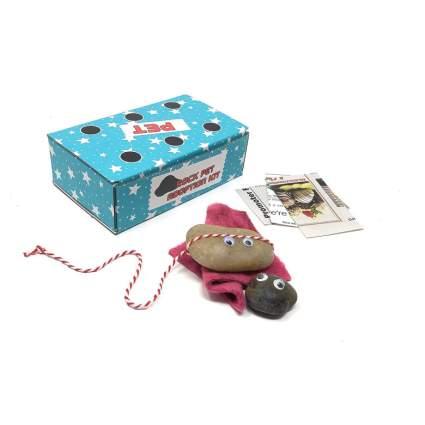 pet rock kit
