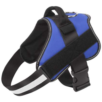 Blue no-pull dog harness