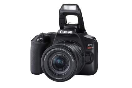 Canon EOS REBEL SL3 Digital SLR Camera