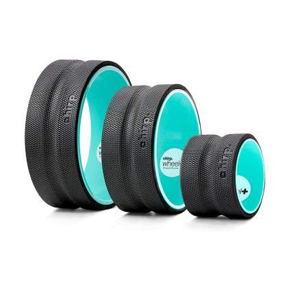 Chirp Wheel+ For Back Pain Relief