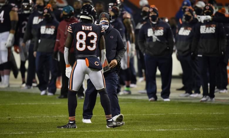 Bears WR Javon Wims fight