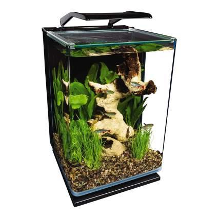 5-gallon fish tank